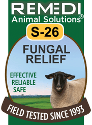 Fungal Relief in Sheep