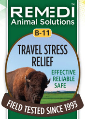 Travel Stress Relief, B-11