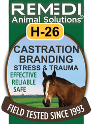 Castration, Branding, Stress & Trauma, H-26
