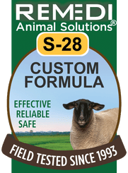 Custom Homeopathic Formula for Sheep