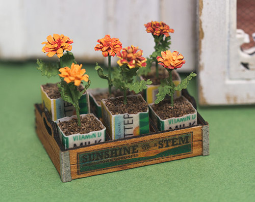 Crate of Marigolds Kit