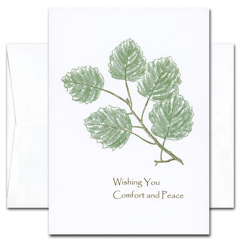 Boxed business and medical sympathy card comfort sympathy card comfort cover is an botanical illustration of green leaves on a branch with colourmoves Gallery