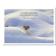 "New Eyes New Years Card cover photo shows white ermine looking out over a snowbank with the quote, ""So shall we come to look at the world with new eyes - Ralph Waldo Emerson"""