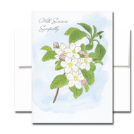 Sympathy Card: Apple Blossom. Cover has a hand-painted watercolor illustration of an branch of apple blossoms and the words With Sincere Sympathy