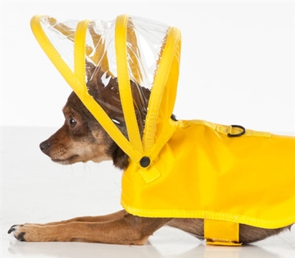 Yellow Dog Raincoat