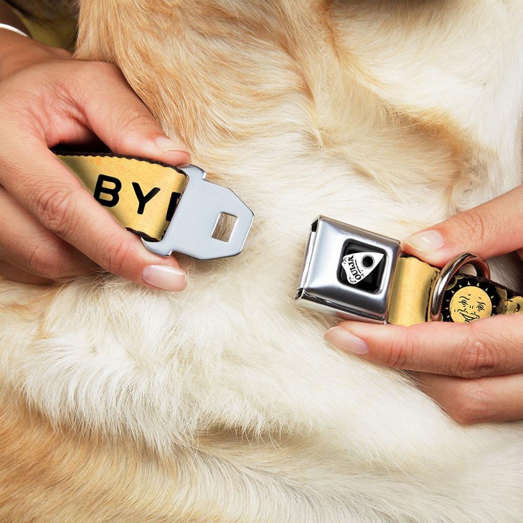 Ouija Board Dog Collar