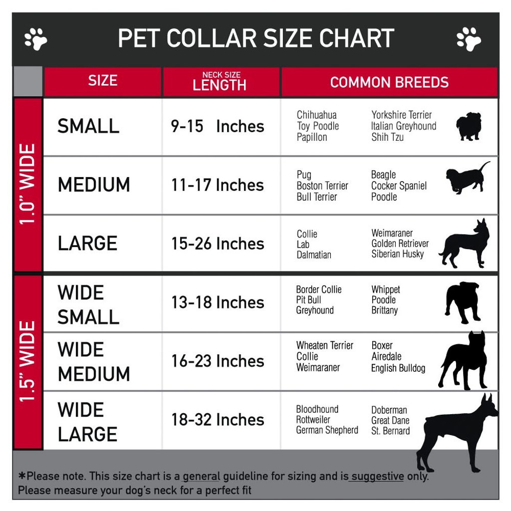 great pyrenees size chart