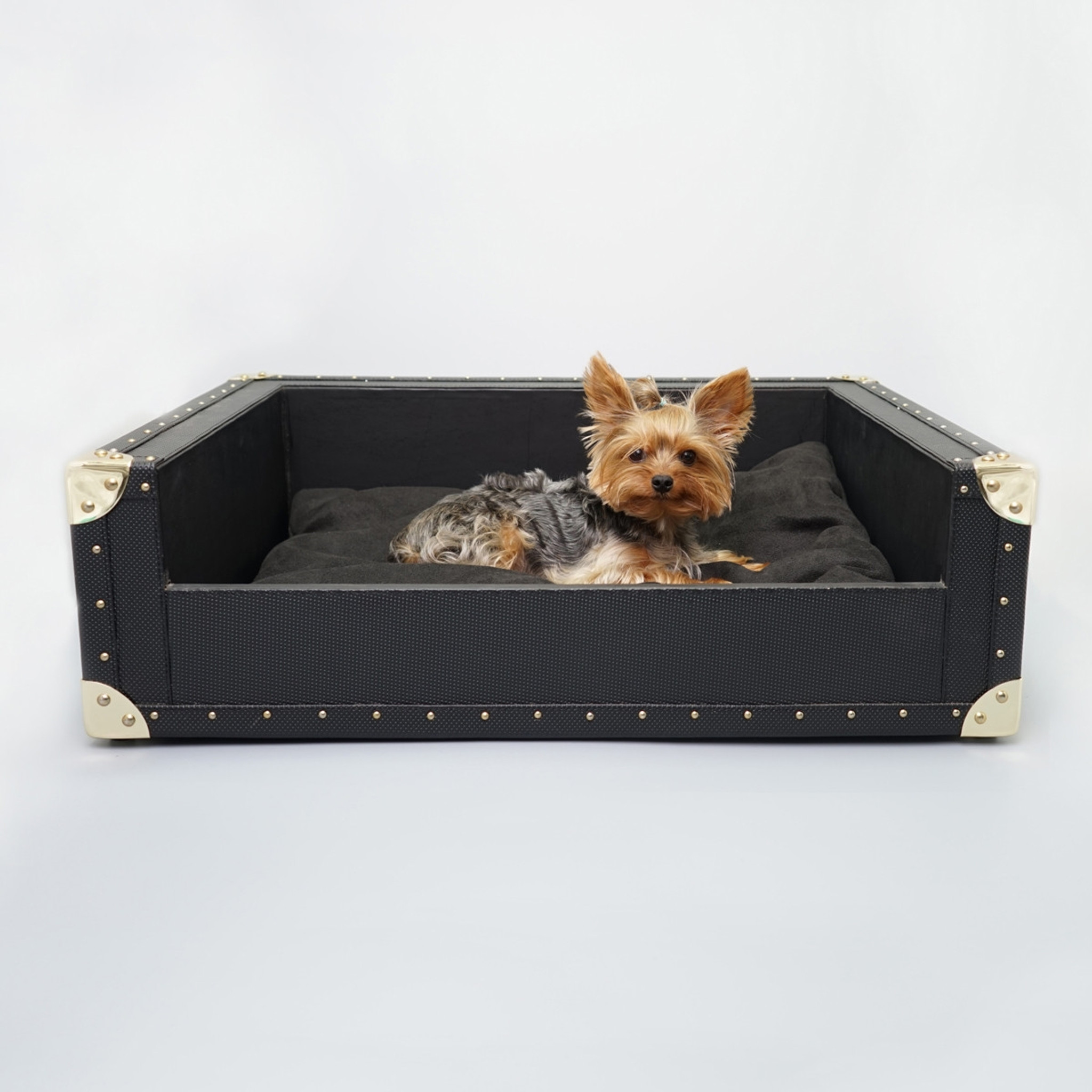 modern dog beds  contemporary dog beds  rockstar puppy. the trunk bed  yorkshire (many colors faux leather large)