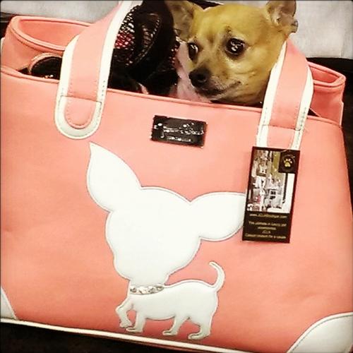 Te Quiero Chihuahua Rescue Me Tote