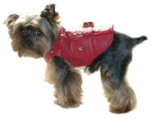 Thriller Red Motorcycle Dog Jacket