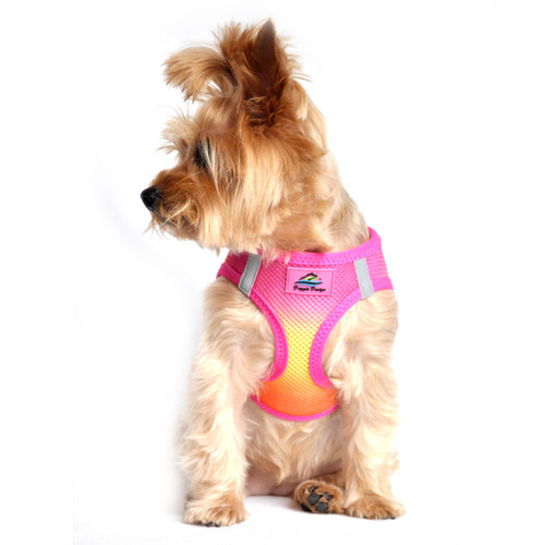 Choke Free Ombre Mesh Dog Harness - Raspberry Pink Orange