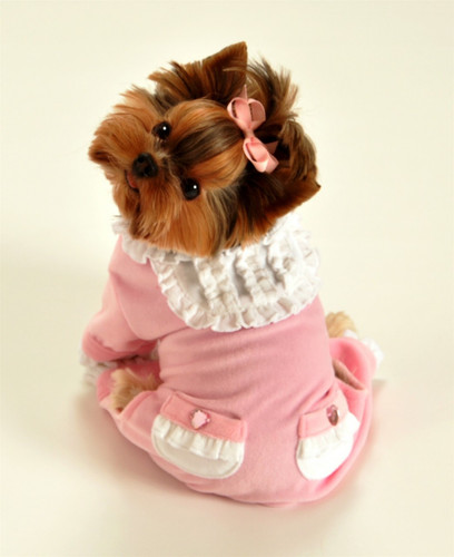 Pink Sweety Dog Jumper