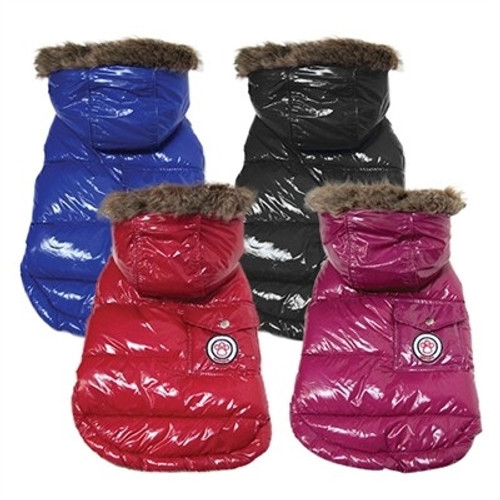 Warm Winter Dog Coats and Jackets | Rockstar Puppy