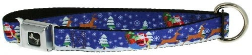 Santa and Reindeer Dog Collar + Leash Set