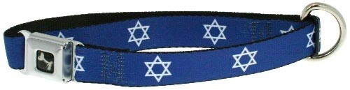 Star of David Dog Collar + Leash Set