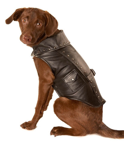 Black Leather Motorcycle Dog jacket