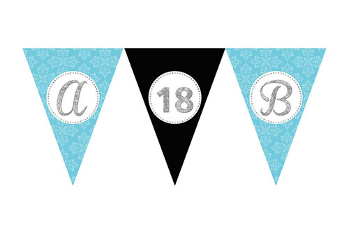 Blue VIP Event Birthday party personalised bunting flag decorations.